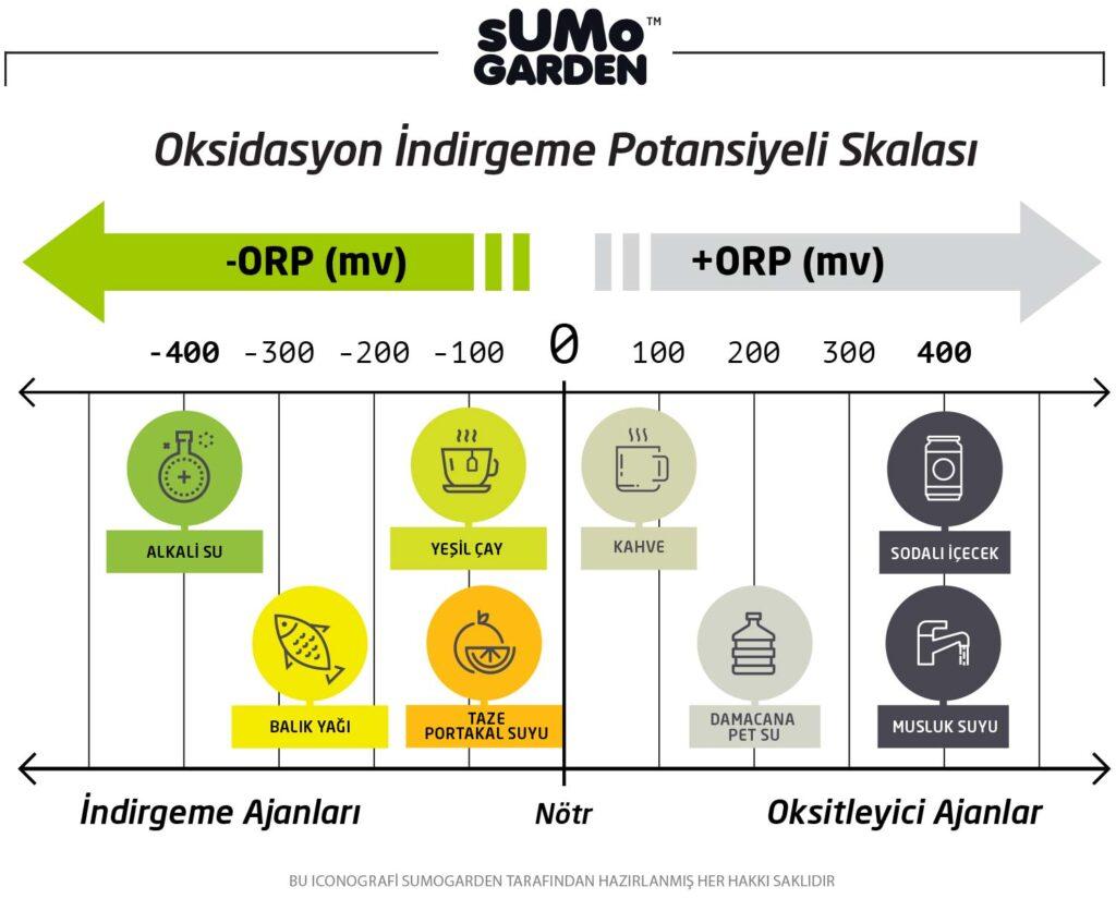 Oksidasyon Skalası